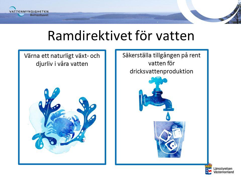 Vattenförvaltningens arbetscykel