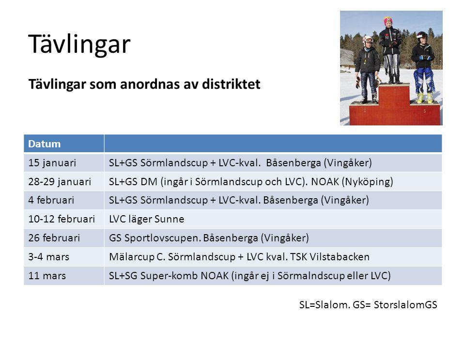 Tävlingar Datum 15 januariSL+GS Sörmlandscup + LVC-kval. Båsenberga (Vingåker) 28-29 januariSL+GS DM (ingår i Sörmlandscup och LVC). NOAK (Nyköping) 4
