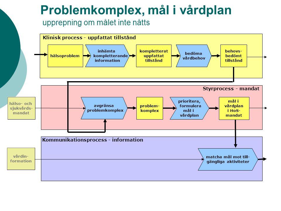 Problemkomplex, mål i vårdplan upprepning om målet inte nåtts hälso- och sjukvårds- mandat vårdin- formation inhämta kompletterande information komple