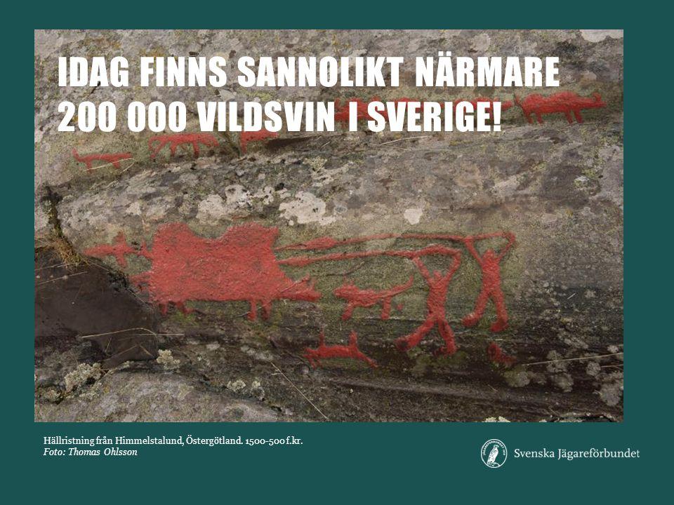 Hällristning från Himmelstalund, Östergötland.1500-500 f.kr.