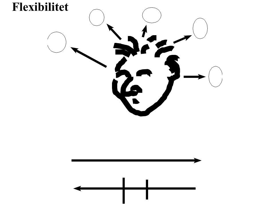 Förmågan att kunna orientera sig i rummet.Gestaltminnet, att återskapa mönster.