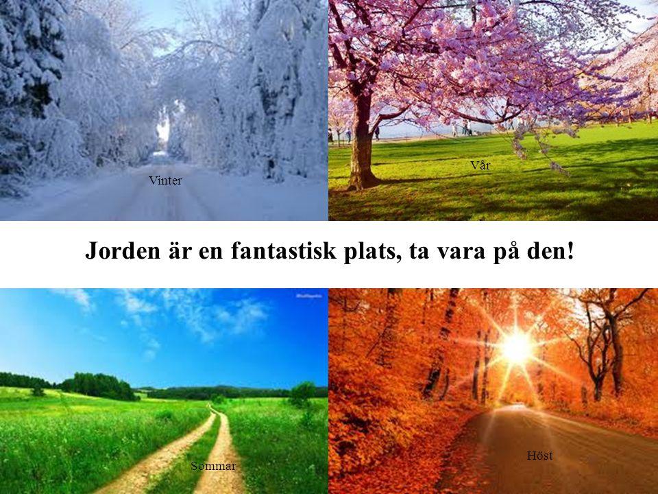 Jorden är en fantastisk plats, ta vara på den! Vinter Vår Sommar Höst