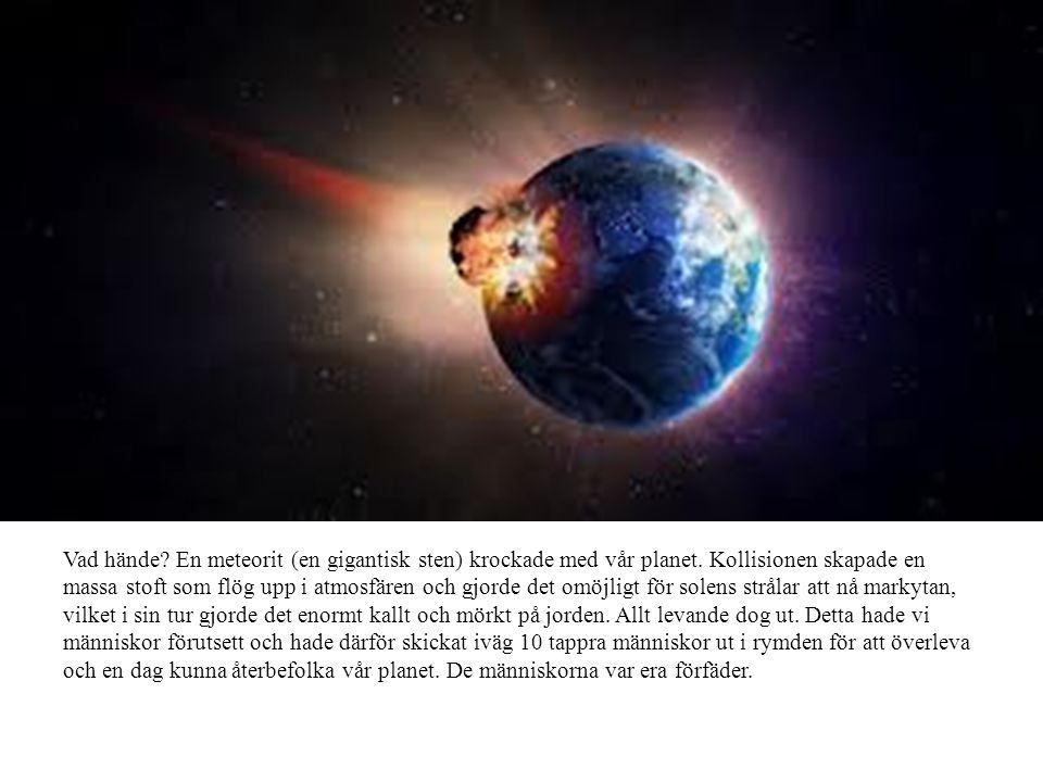 Vad hände? En meteorit (en gigantisk sten) krockade med vår planet. Kollisionen skapade en massa stoft som flög upp i atmosfären och gjorde det omöjli
