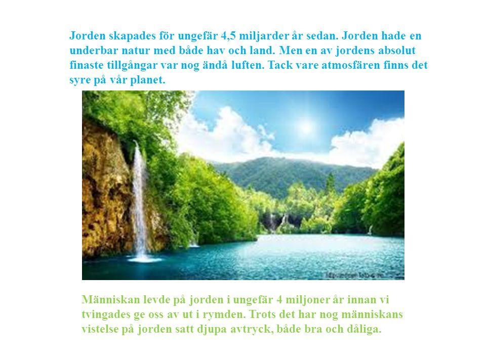 Jorden skapades för ungefär 4,5 miljarder år sedan. Jorden hade en underbar natur med både hav och land. Men en av jordens absolut finaste tillgångar
