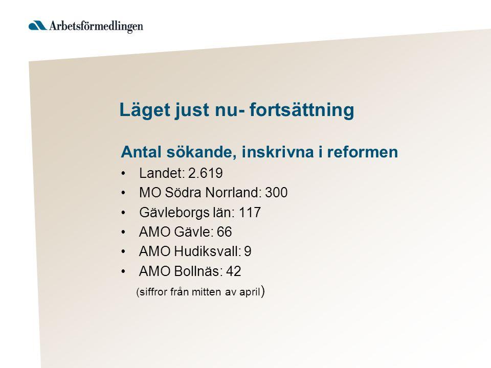 Läget just nu- fortsättning Antal sökande, inskrivna i reformen Landet: 2.619 MO Södra Norrland: 300 Gävleborgs län: 117 AMO Gävle: 66 AMO Hudiksvall: 9 AMO Bollnäs: 42 (siffror från mitten av april )