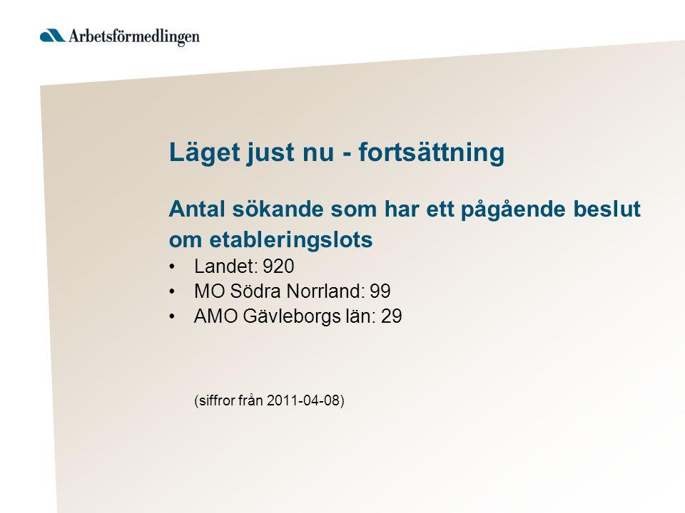 Läget just nu - fortsättning Antal sökande som har ett pågående beslut om etableringslots Landet: 920 MO Södra Norrland: 99 AMO Gävleborgs län: 29 (siffror från 2011-04-08)