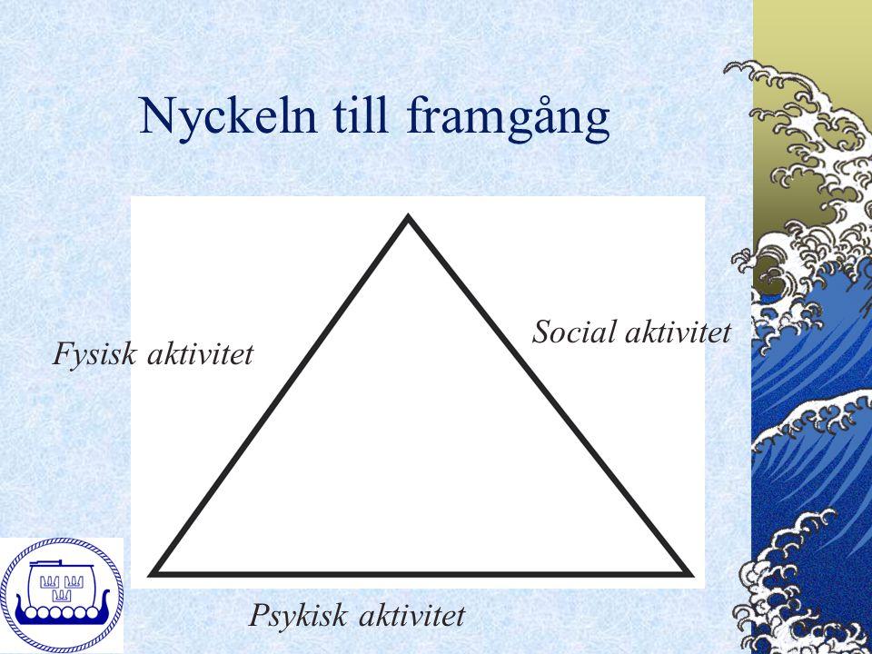 Nyckeln till framgång Fysisk aktivitet Psykisk aktivitet Social aktivitet