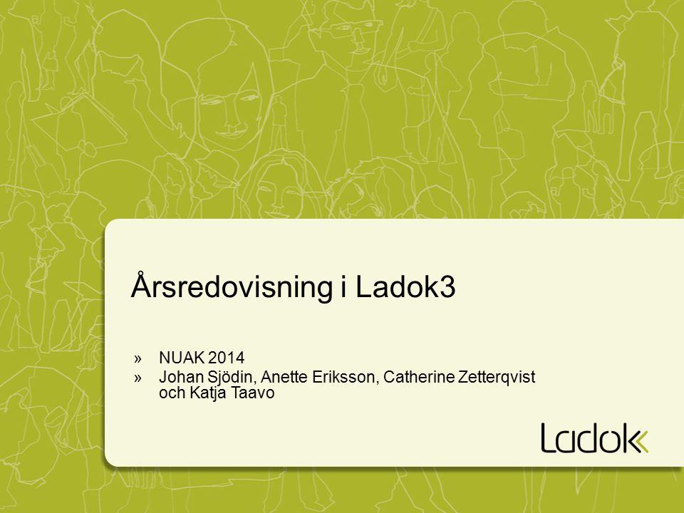 Årsredovisning i Ladok3 »NUAK 2014 »Johan Sjödin, Anette Eriksson, Catherine Zetterqvist och Katja Taavo