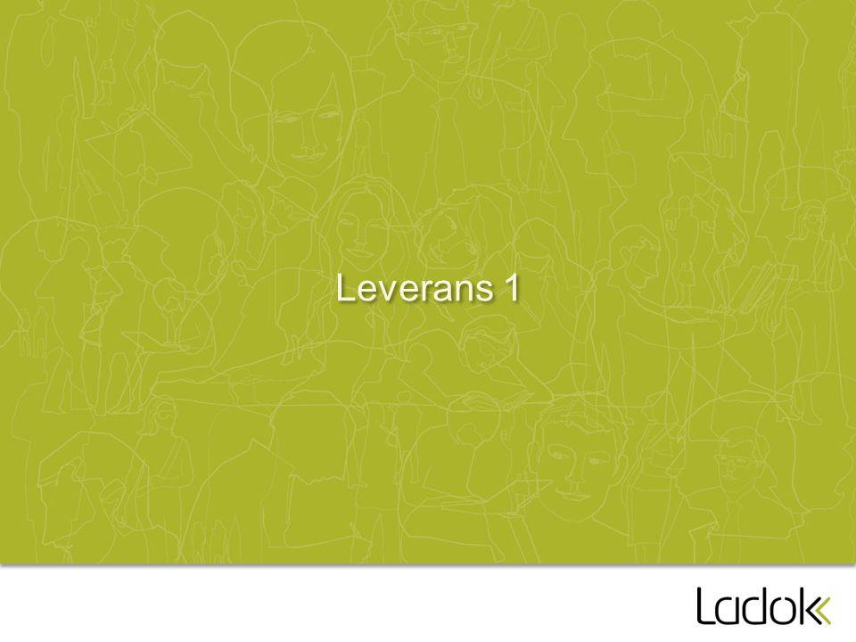 Leverans 1