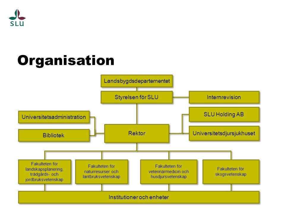 Jord- och trädgårdsbruk Landskapsplanering Livsmedelsproduktion Naturvård Skogsbruk och vedråvarans förädling Fiske och vattenbruk Veterinärmedicin och husdjursskötsel Kombinationen av grundläggande forskning, utbildning och samhälls- relaterad verksamhet utgör SLU:s speciella styrka. Ur Strategi för SLU 2013-2016 Styrkan är…