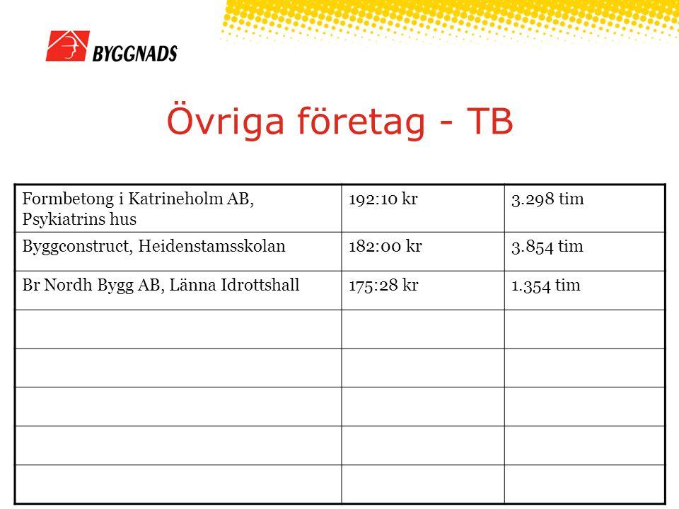 Övriga företag - TB Formbetong i Katrineholm AB, Psykiatrins hus 192:10 kr3.298 tim Byggconstruct, Heidenstamsskolan182:00 kr3.854 tim Br Nordh Bygg AB, Länna Idrottshall175:28 kr1.354 tim