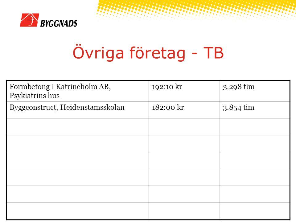 Övriga företag - TB Formbetong i Katrineholm AB, Psykiatrins hus 192:10 kr3.298 tim Byggconstruct, Heidenstamsskolan182:00 kr3.854 tim