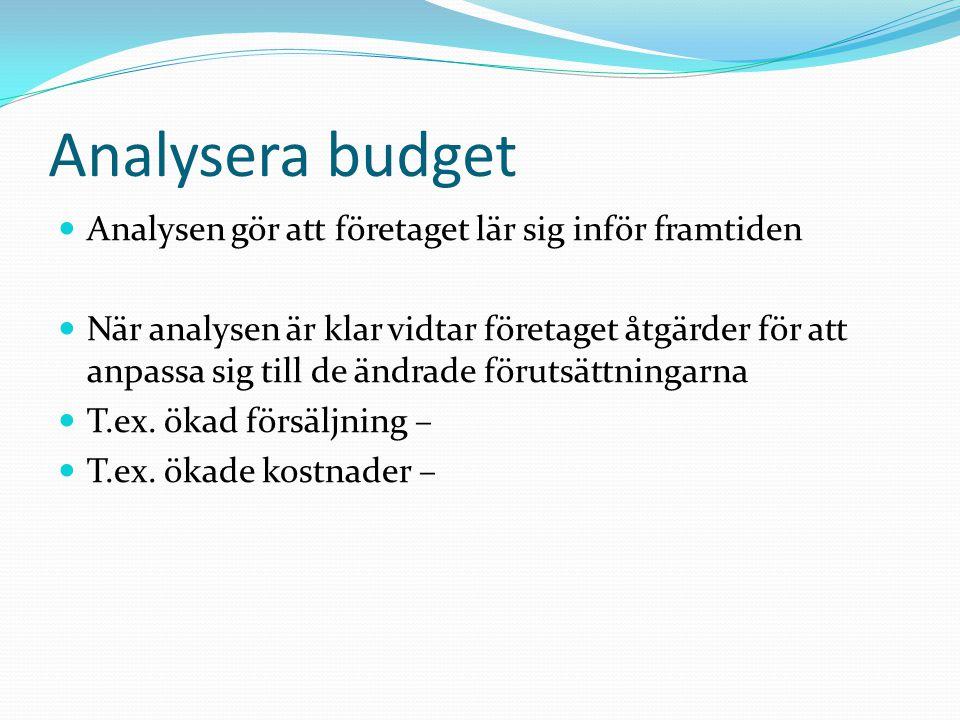 Analysera budget Analysen gör att företaget lär sig inför framtiden När analysen är klar vidtar företaget åtgärder för att anpassa sig till de ändrade
