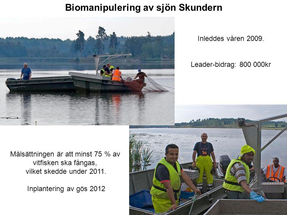 Inleddes våren 2009. Leader-bidrag: 800 000kr Biomanipulering av sjön Skundern Målsättningen är att minst 75 % av vitfisken ska fångas, vilket skedde