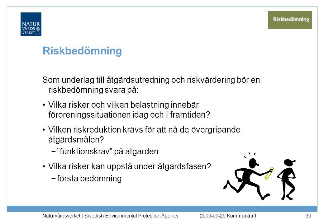 Naturvårdsverket | Swedish Environmental Protection Agency 30 Riskbedömning Som underlag till åtgärdsutredning och riskvärdering bör en riskbedömning