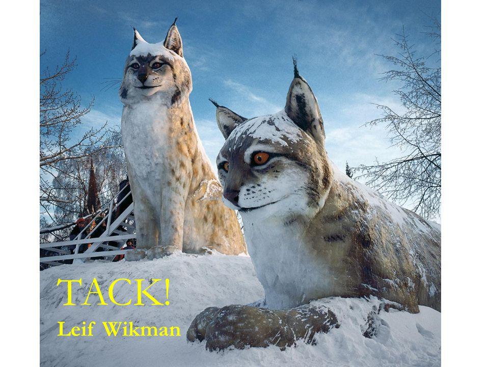 TACK! Leif Wikman