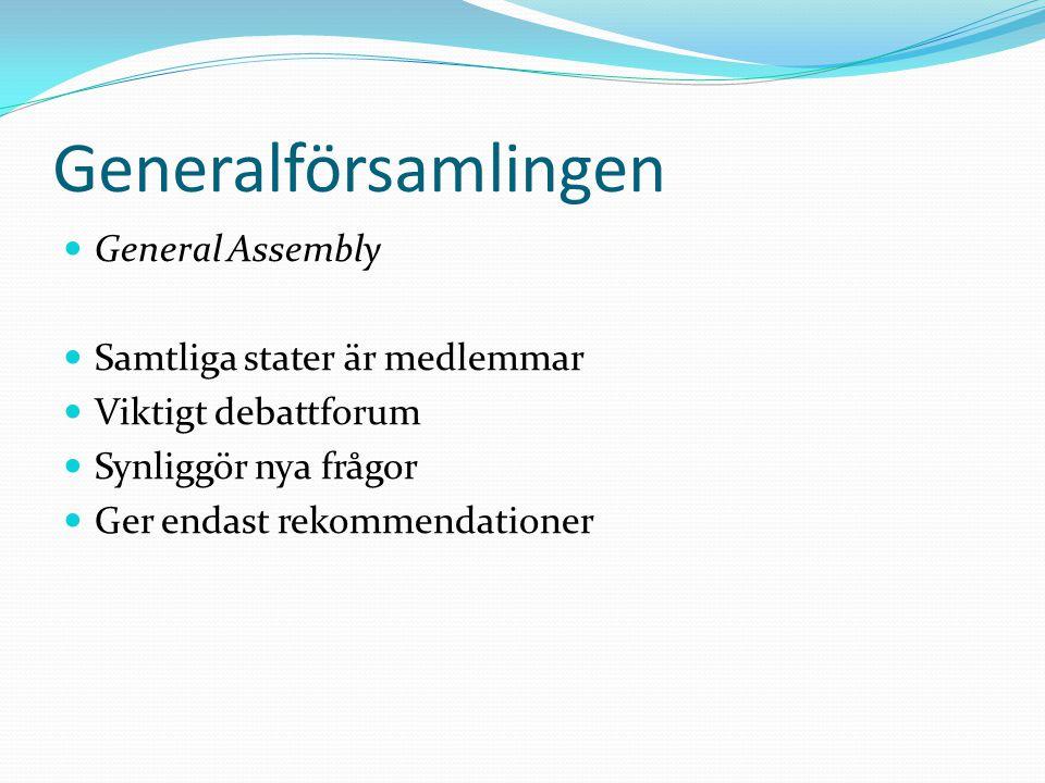 Generalförsamlingen General Assembly Samtliga stater är medlemmar Viktigt debattforum Synliggör nya frågor Ger endast rekommendationer