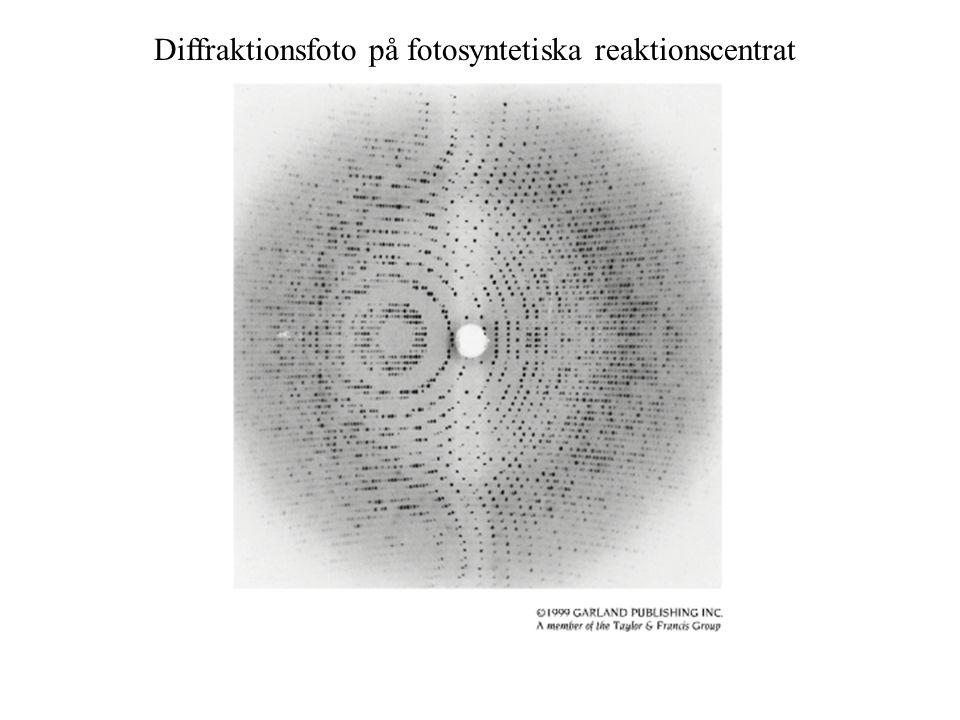 Diffraktionsfoto på fotosyntetiska reaktionscentrat