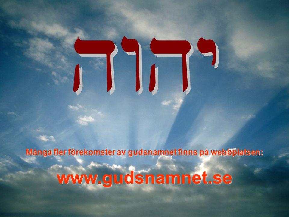Många fler förekomster av gudsnamnet finns på webbplatsen: www.gudsnamnet.se