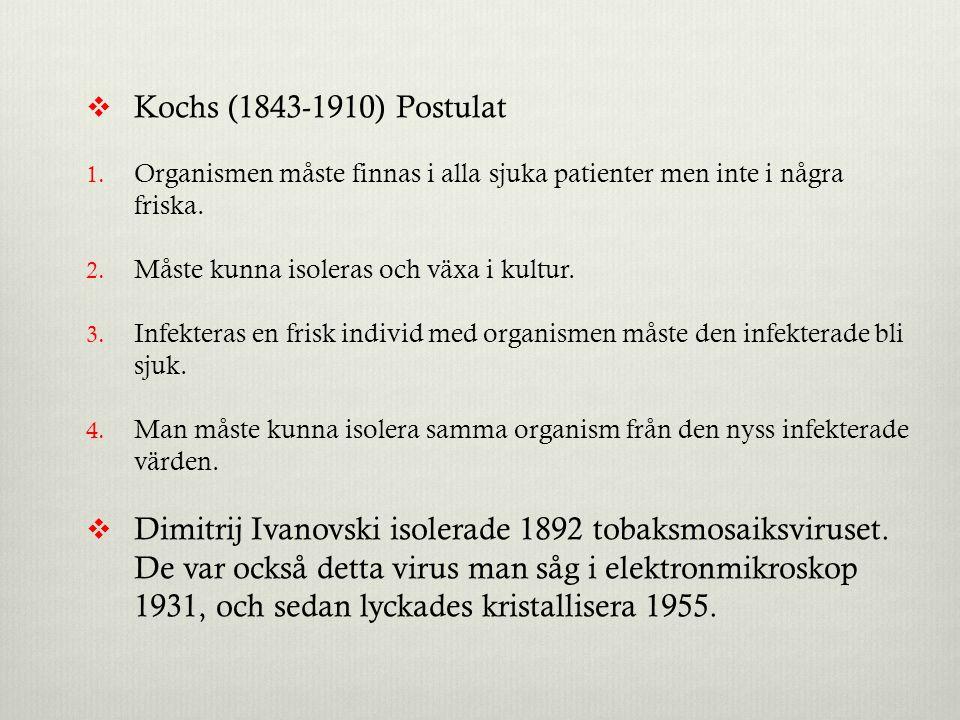  Kochs (1843-1910) Postulat 1. Organismen måste finnas i alla sjuka patienter men inte i några friska. 2. Måste kunna isoleras och växa i kultur. 3.