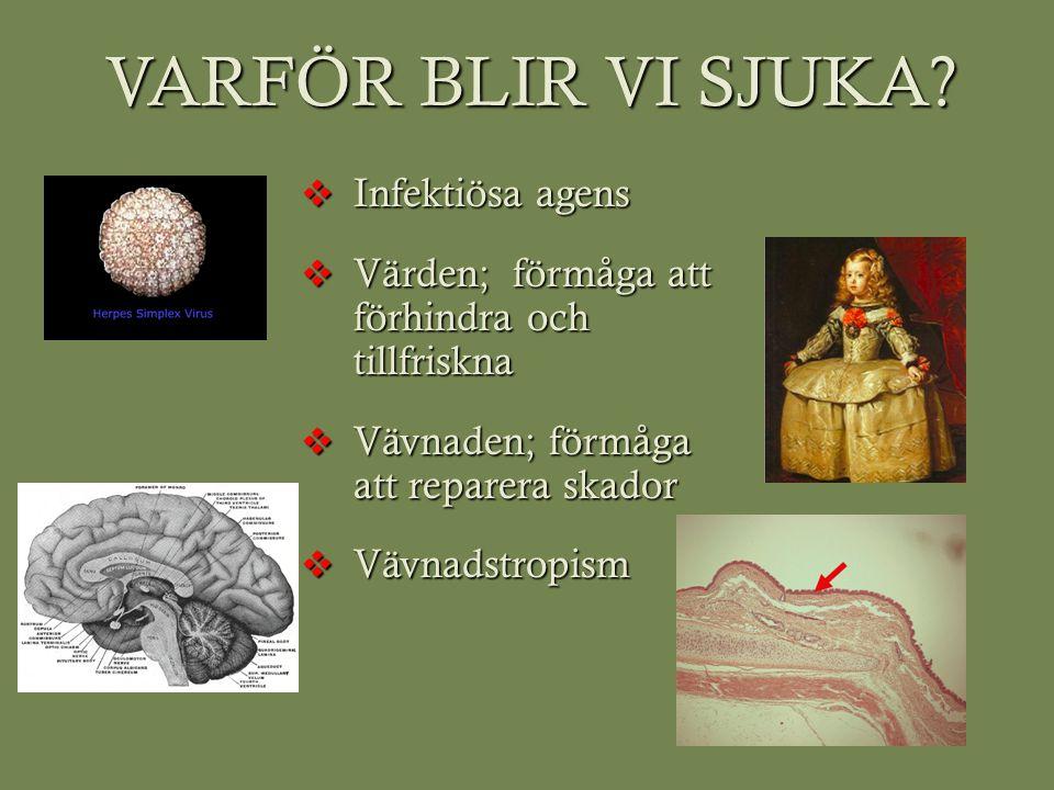 Infektiösa agens  BAKTERIER  VIRUS  PARASITER  PRIONER  SVAMPAR