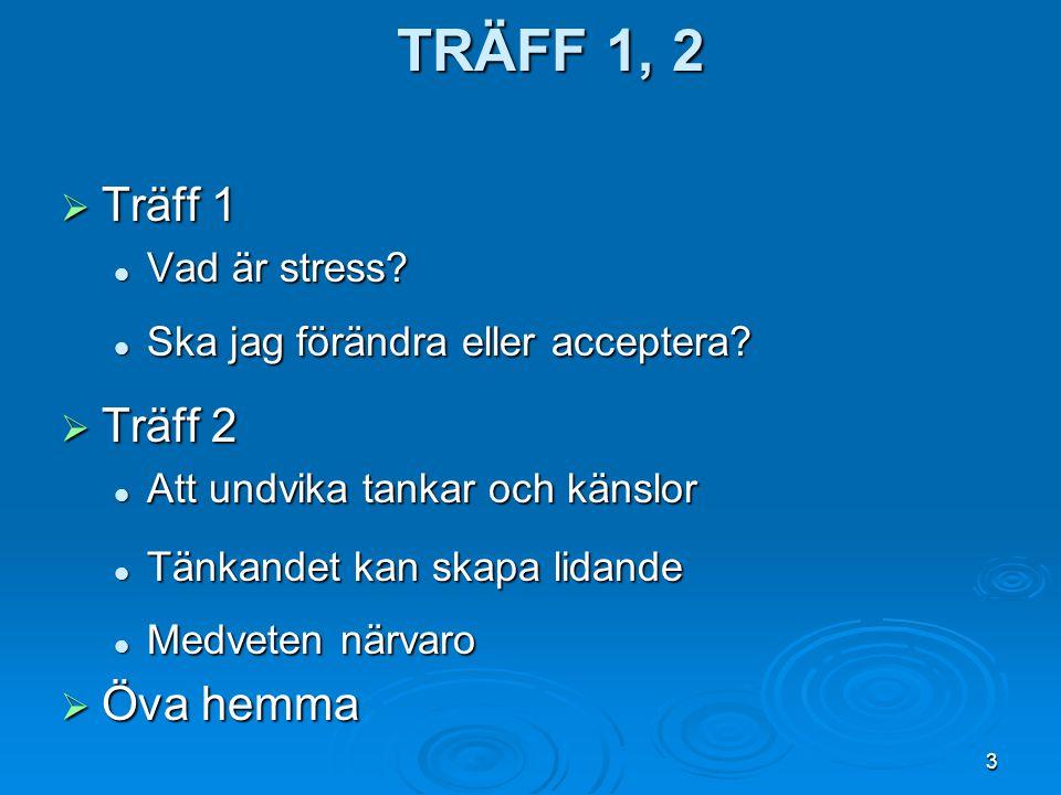 3 TRÄFF 1, 2  Träff 1 Vad är stress? Vad är stress? Ska jag förändra eller acceptera? Ska jag förändra eller acceptera?  Träff 2 Att undvika tankar