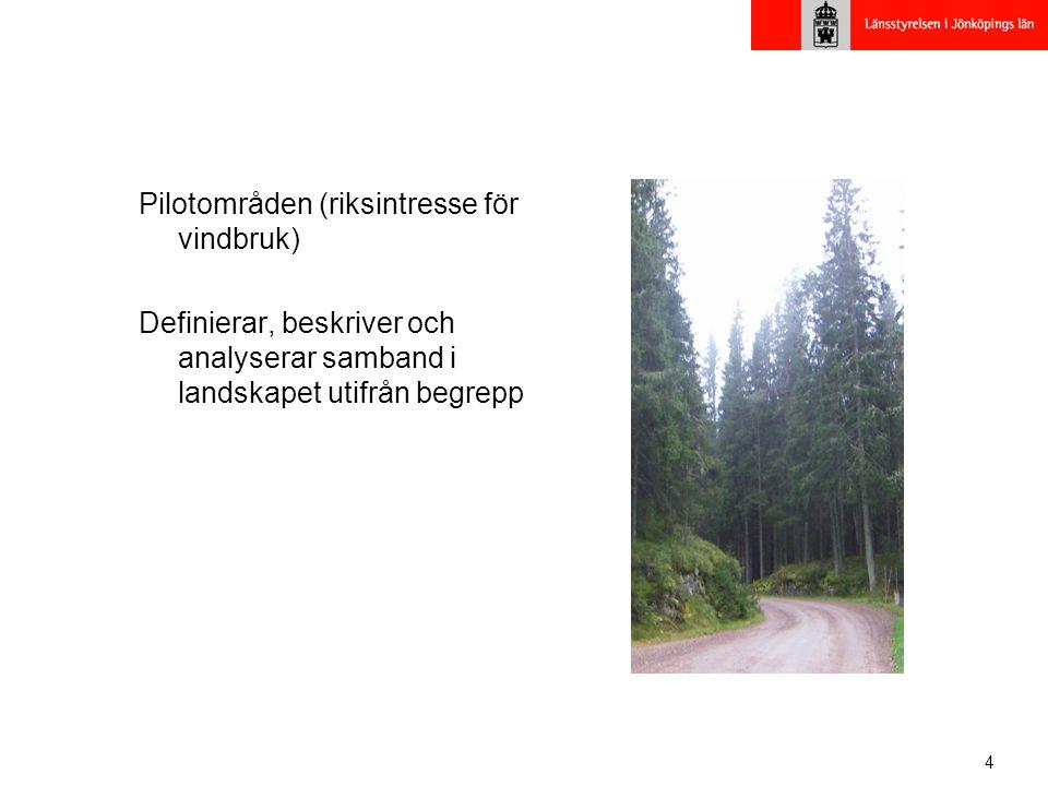 4 Pilotområden (riksintresse för vindbruk) Definierar, beskriver och analyserar samband i landskapet utifrån begrepp