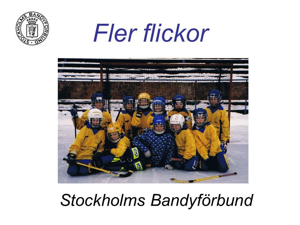 Fler flickor Stockholms Bandyförbund