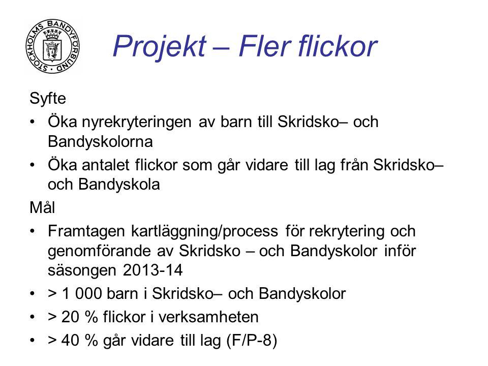 Projekt – Fler flickor Syfte Öka nyrekryteringen av barn till Skridsko– och Bandyskolorna Öka antalet flickor som går vidare till lag från Skridsko– och Bandyskola Mål Framtagen kartläggning/process för rekrytering och genomförande av Skridsko – och Bandyskolor inför säsongen 2013-14 > 1 000 barn i Skridsko– och Bandyskolor > 20 % flickor i verksamheten > 40 % går vidare till lag (F/P-8)