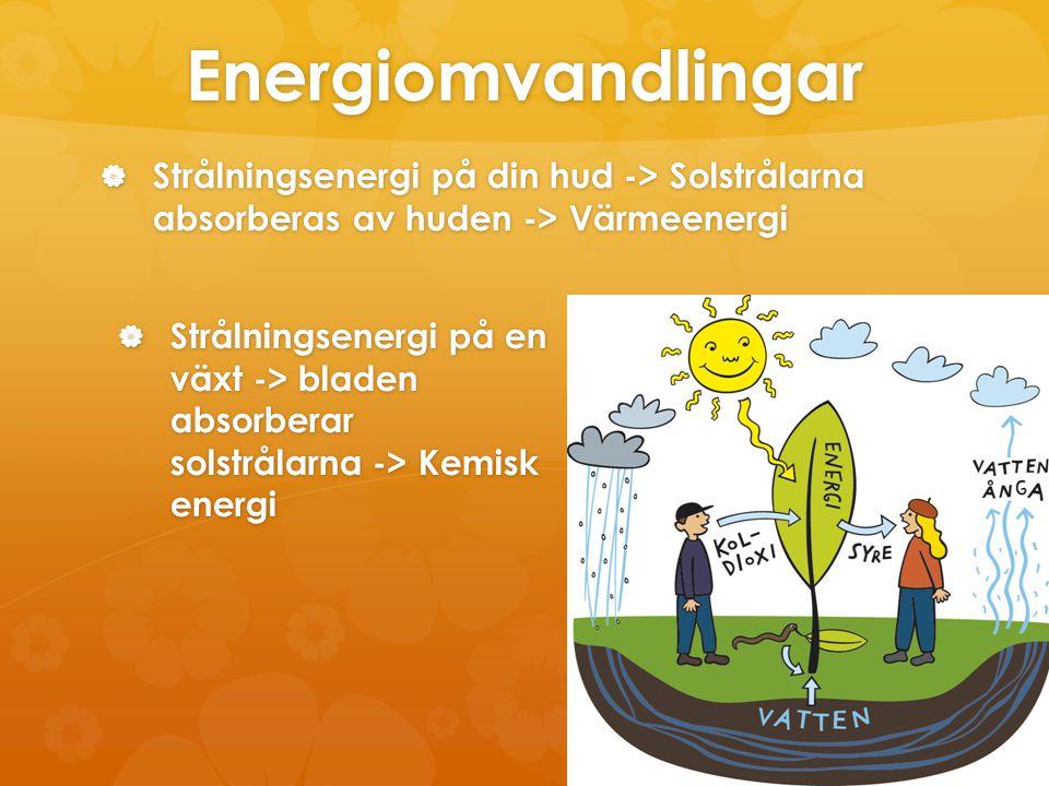 Energiomvandlingar  Strålningsenergi på din hud -> Solstrålarna absorberas av huden -> Värmeenergi  Strålningsenergi på en växt -> bladen absorberar