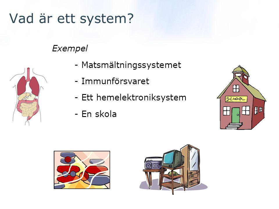 Vad är ett system? Exempel - Matsmältningssystemet - Immunförsvaret - Ett hemelektroniksystem - En skola