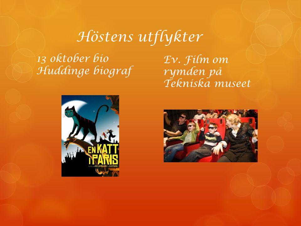 Bloggen http://snettringarna.webnode.se/