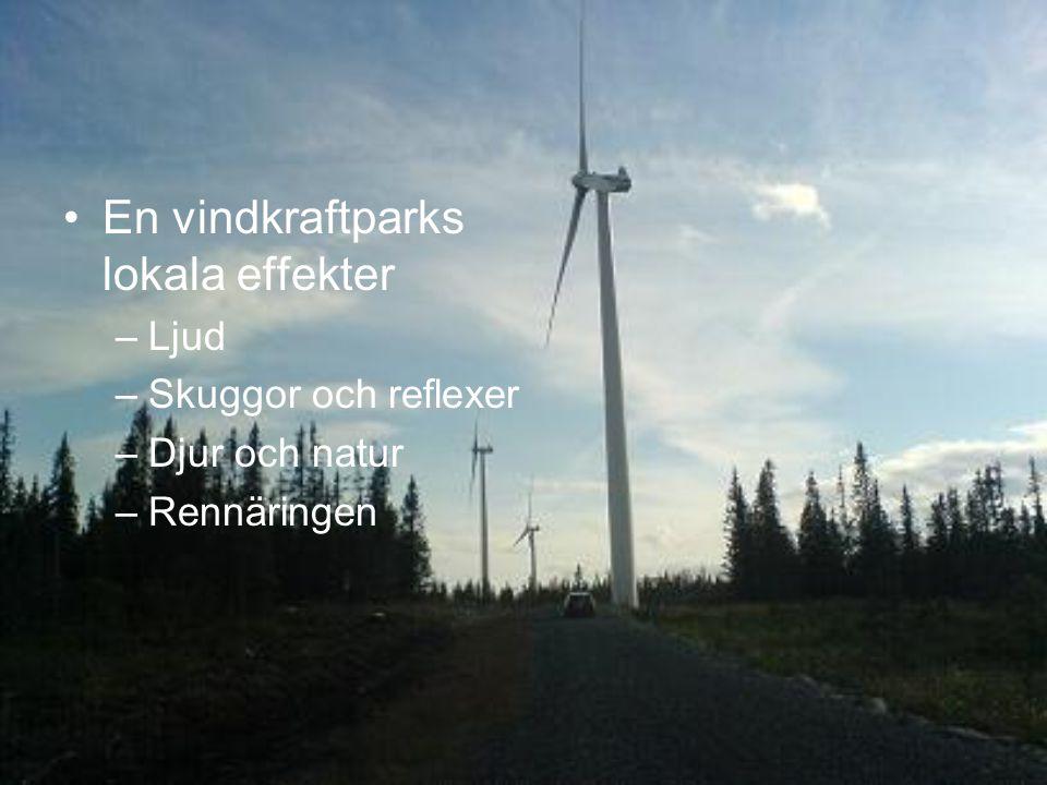En vindkraftparks lokala effekter –Ljud –Skuggor och reflexer –Djur och natur –Rennäringen