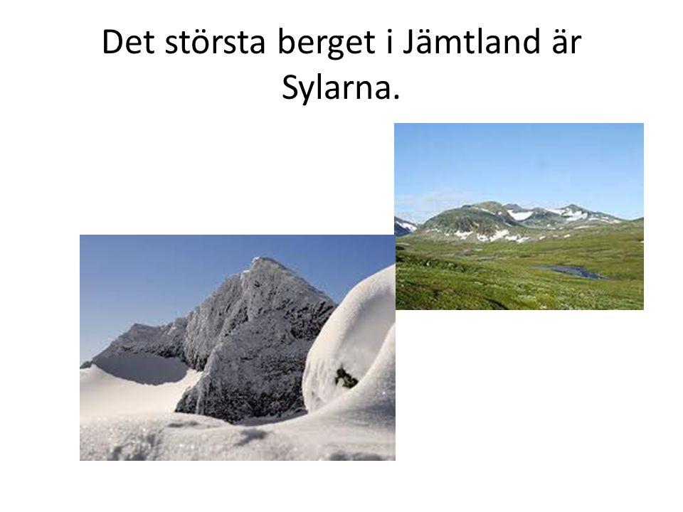 Det största berget i Jämtland är Sylarna.