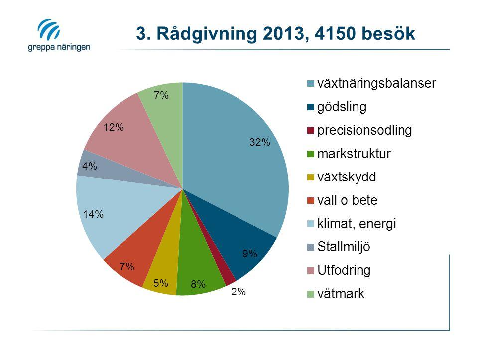 3. Rådgivning 2013, 4150 besök
