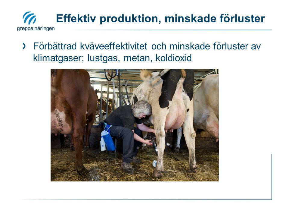 Effektiv produktion, minskade förluster Förbättrad kväveeffektivitet och minskade förluster av klimatgaser; lustgas, metan, koldioxid