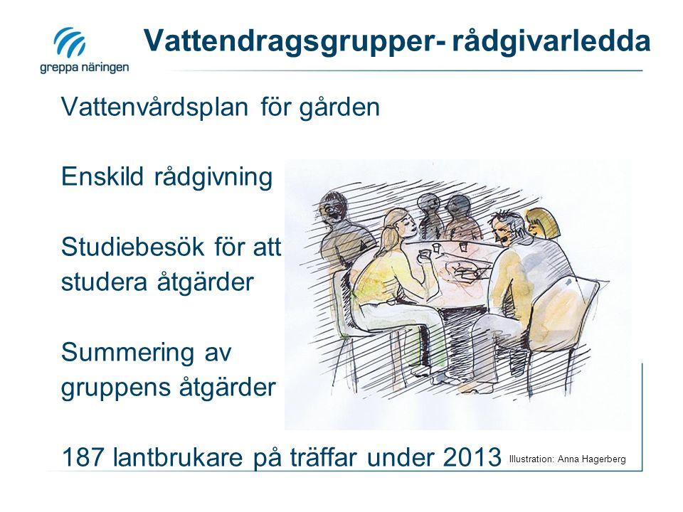 Vattendragsgrupper- rådgivarledda Vattenvårdsplan för gården Enskild rådgivning Studiebesök för att studera åtgärder Summering av gruppens åtgärder 187 lantbrukare på träffar under 2013 Illustration: Anna Hagerberg