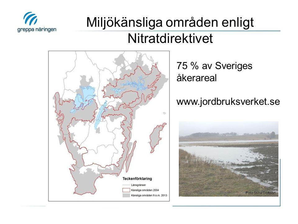 Miljökänsliga områden enligt Nitratdirektivet www.jordbruksverket.se 75 % av Sveriges åkerareal Foto Stina Olofsson