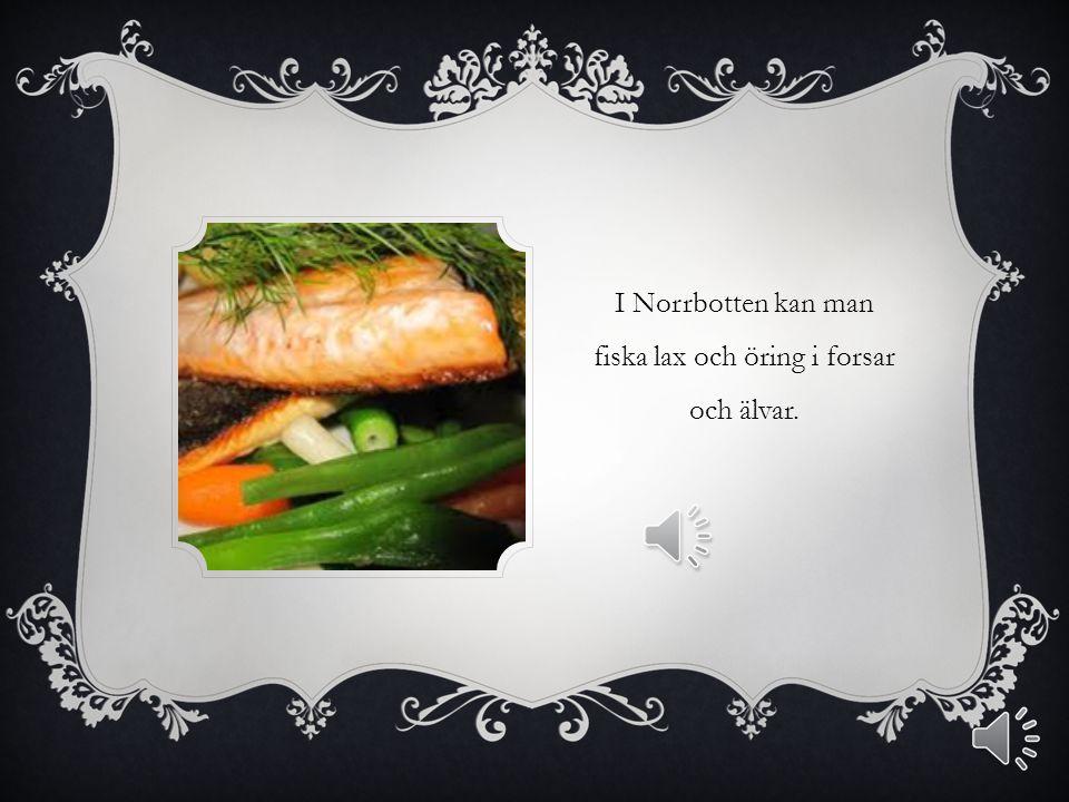 I NORRLAND KAN MAN ÅKA SKIDOR OCH ÅKA SNÖSKOTER.