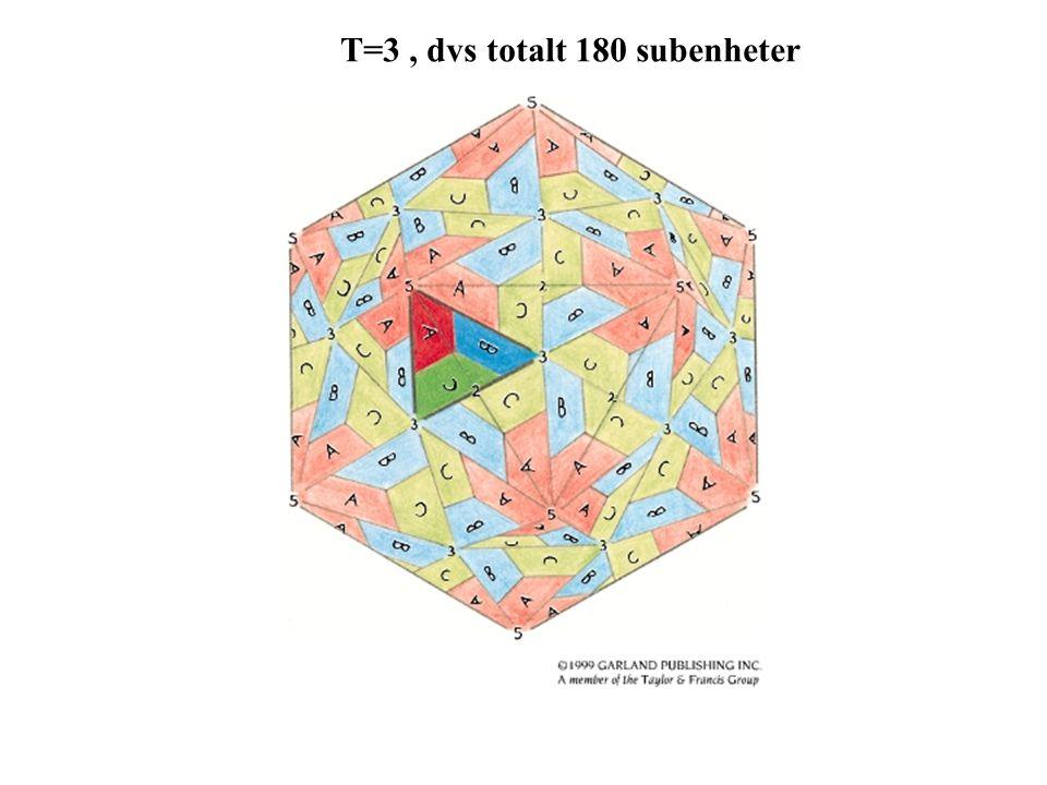 T=3, dvs totalt 180 subenheter