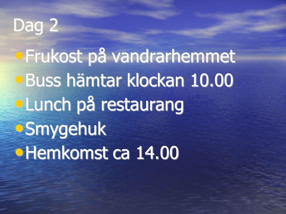 Dag 2 Frukost på vandrarhemmet Frukost på vandrarhemmet Buss hämtar klockan 10.00 Buss hämtar klockan 10.00 Lunch på restaurang Lunch på restaurang Smygehuk Smygehuk Hemkomst ca 14.00 Hemkomst ca 14.00