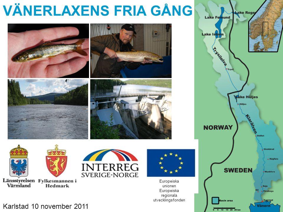 VÄNERLAXENS FRIA GÅNG Europeiska unionen Europeiska regionala utvecklingsfonden Karlstad 10 november 2011