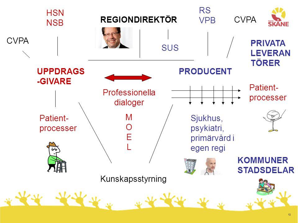 13 REGIONDIREKTÖR UPPDRAGS -GIVARE PRODUCENT Patient- processer Sjukhus, psykiatri, primärvård i egen regi Patient- processer HSN NSB RS VPB Professio