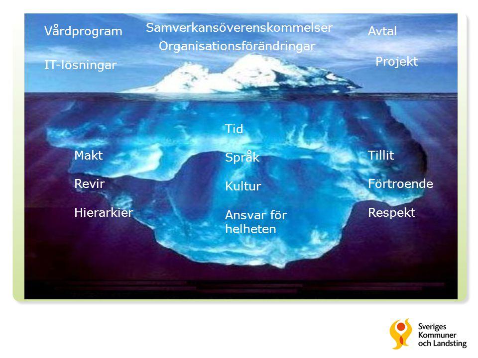 Vårdprogram Samverkansöverenskommelser Avtal IT-lösningar Projekt Organisationsförändringar Makt Revir Hierarkier Tillit Förtroende Respekt Tid Språk Kultur Ansvar för helheten