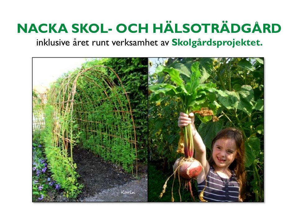 NACKA SKOL- OCH HÄLSOTRÄDGÅRD inklusive året runt verksamhet av Skolgårdsprojektet.
