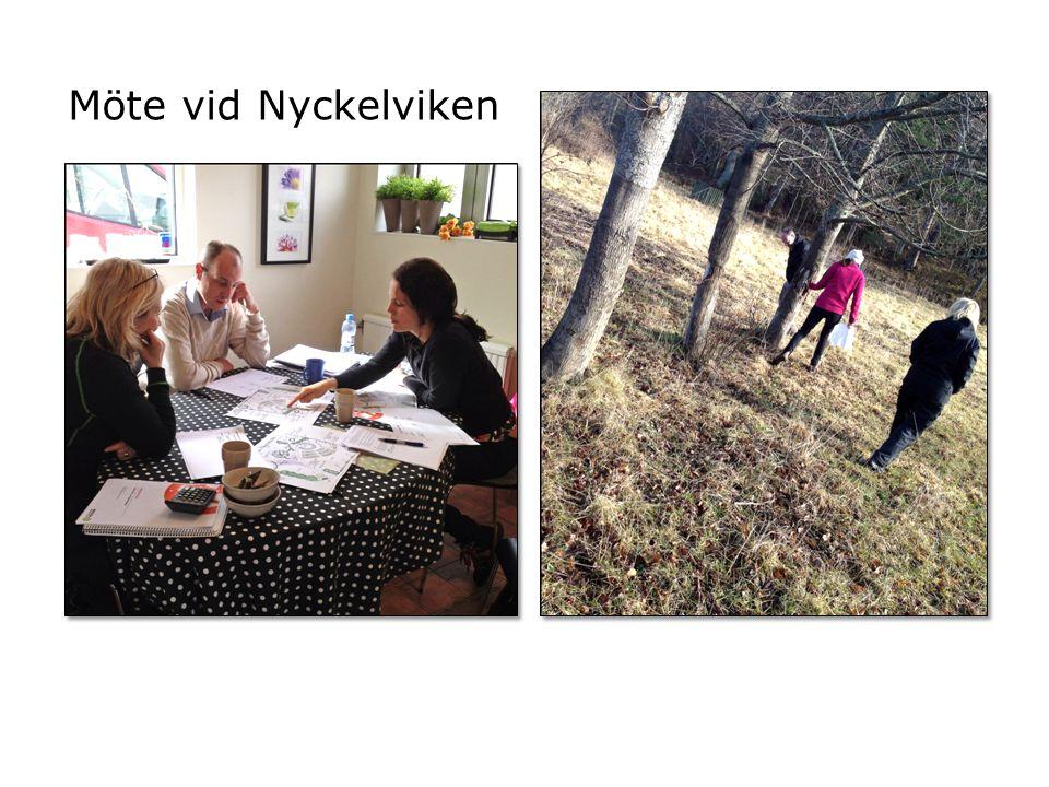 NACKA SKOL- OCH HÄLSOTRÄDGÅRD Nacka Skol-& hälsoträdgård Planteringsplan Sara Chronvall 2012-04-23