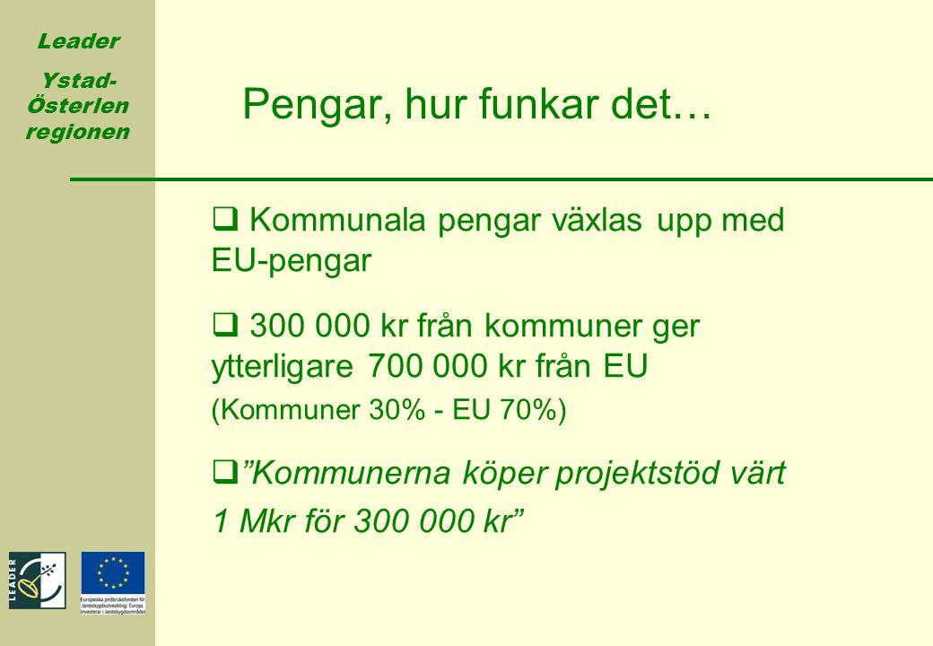Leader Ystad- Österlen regionen Pengar, hur funkar det…  Kommunala pengar växlas upp med EU-pengar  300 000 kr från kommuner ger ytterligare 700 000