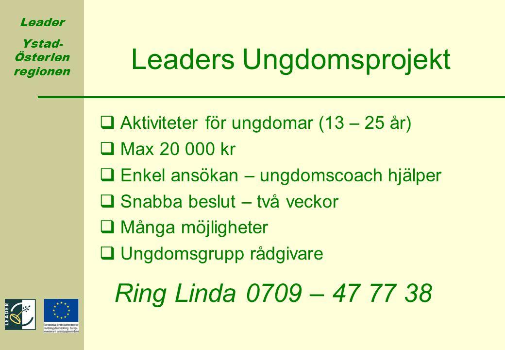 Leader Ystad- Österlen regionen Leaders Ungdomsprojekt  Aktiviteter för ungdomar (13 – 25 år)  Max 20 000 kr  Enkel ansökan – ungdomscoach hjälper