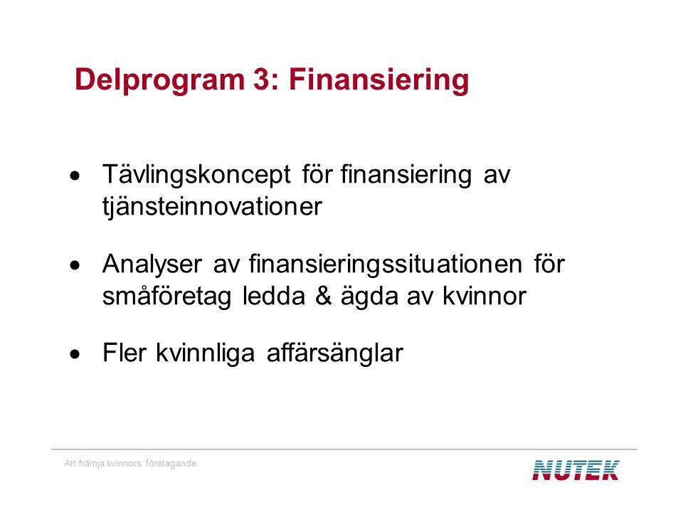 Att främja kvinnors företagande Delprogram 3: Finansiering  Tävlingskoncept för finansiering av tjänsteinnovationer  Analyser av finansieringssituationen för småföretag ledda & ägda av kvinnor  Fler kvinnliga affärsänglar