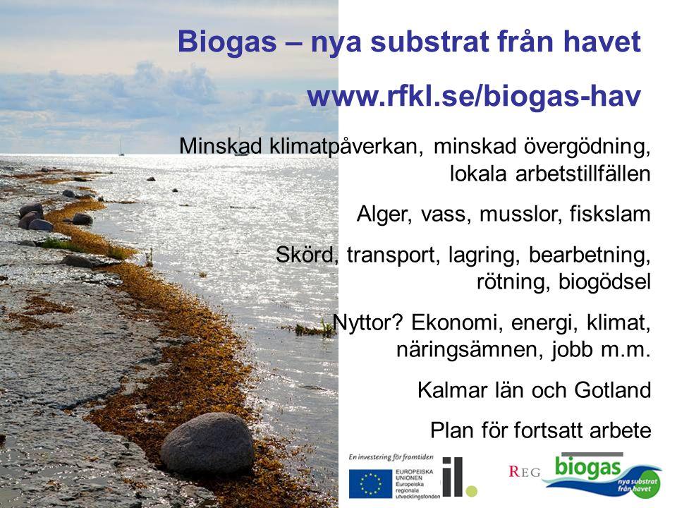 Biogas – nya substrat från havet www.rfkl.se/biogas-hav Minskad klimatpåverkan, minskad övergödning, lokala arbetstillfällen Alger, vass, musslor, fis